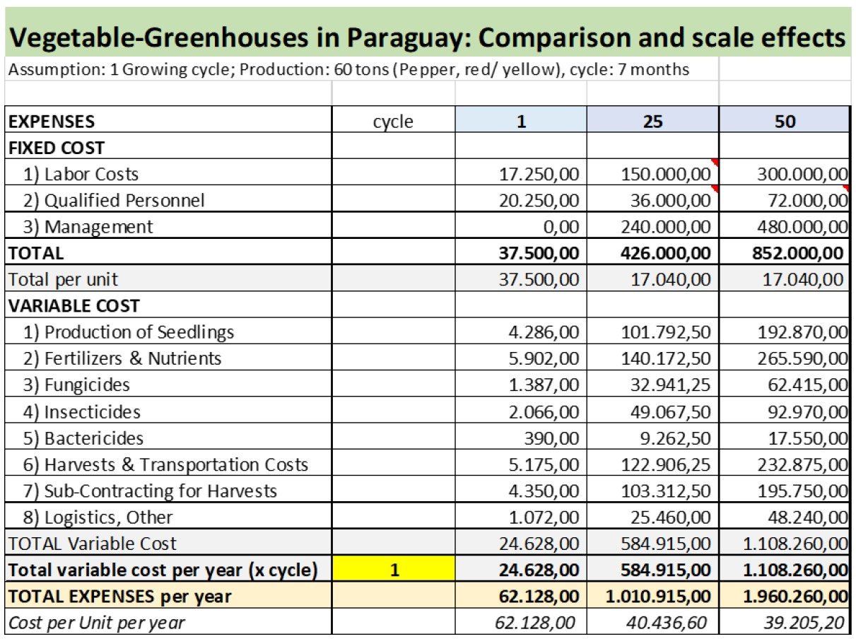Greenhouses in Paraguay - Comparison and scale effect