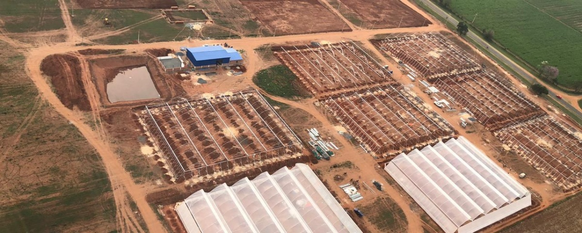 Greenhouses Investment Paraguay
