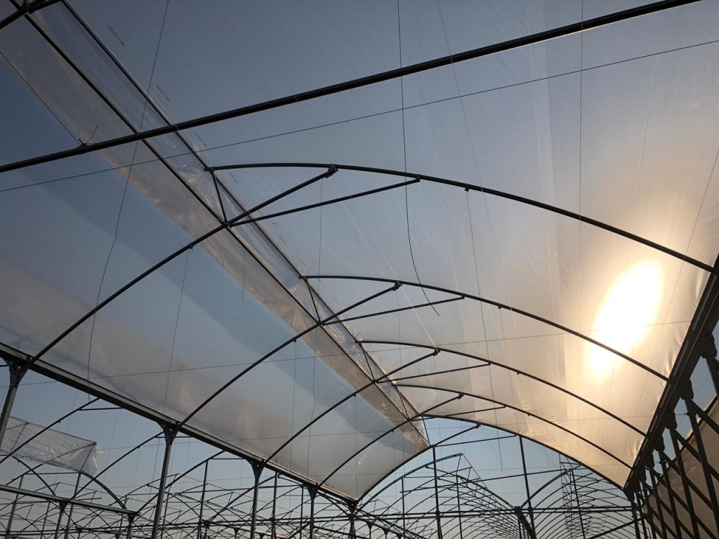 Retractable Greenhouse Roof